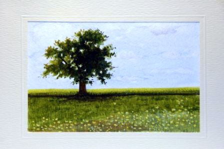 Bushy tree in a meadow