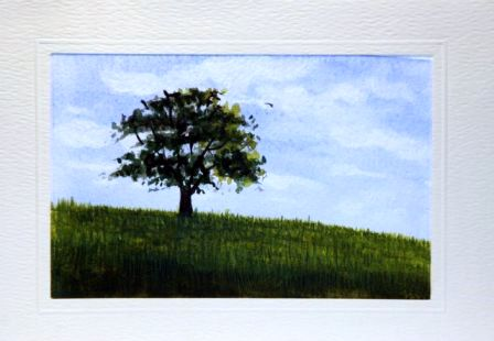 Lonely tree in tall green grass
