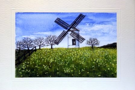 Windmill in a field of daffodils