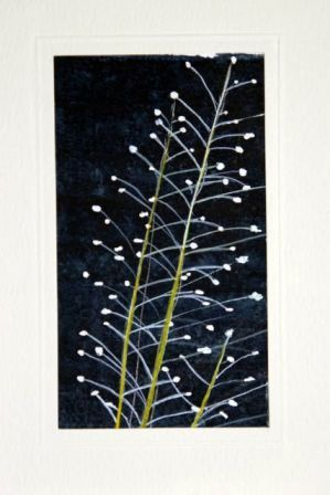 Arts and crafts handmade greetings cards making your own ornamental grass greetings cardshandmade cardshandmade greetings cardshandmade greeting cards m4hsunfo