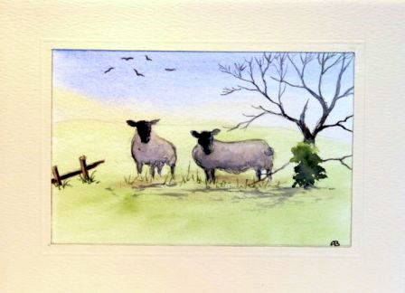 Two sheep greeting cards