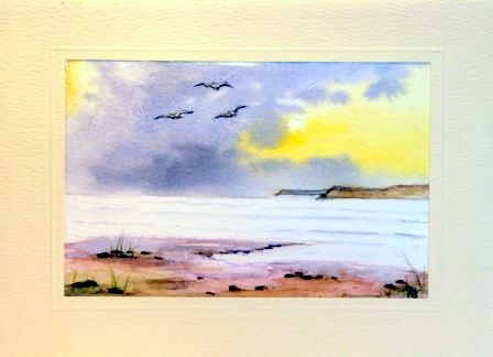 Seascape ocean birds greetings cards hand made