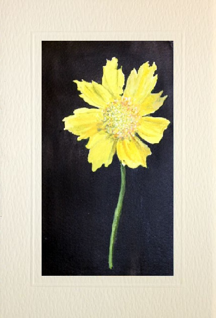 hand made greeting cards of a Yellow Buttercup