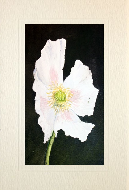 Handmade Water Color greetings cards of a Flower