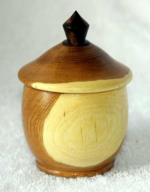 Laburnum ring Box